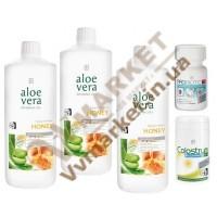 Aloe Verа гель питьевой Алоэ Вера (Алоє Вера) с добавкой Мед, набор Поддержка иммунитета, LR