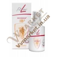 Спрей Фитлайн IB5 (FitLine IB 5)