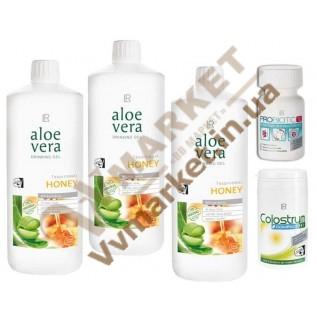 Aloe Verа гель питьевой Алоэ Вера (Алоє Вера) с добавкой Мед, набор Поддержка иммунитета, LR с доставкой вся Украина